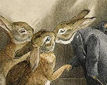 "dEtail from ""The Rabbit's Christmas Party"" as painted by Beatrix Potter"